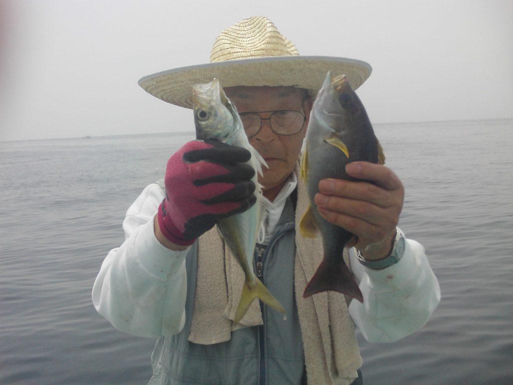 4月23日船釣果